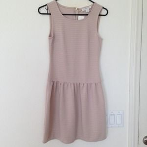 BUNDLEDBNWT! Forever 21 drop waist dress