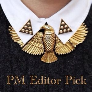 ⭐️PM Editor Pick⭐️ Eagle Statement Necklace