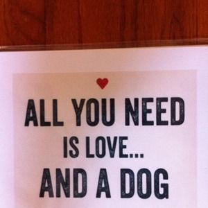 All you need!!