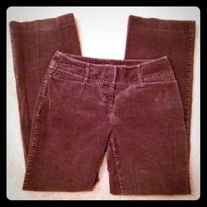Fine Chocolate Brown Corduroy Pants
