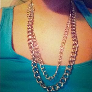 New Stella and dot silver double chain!