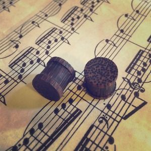 Jewelry - Wooden Plugs NWOT