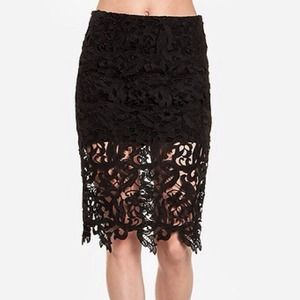 Brand New Venetian Lace Pencil Skirt with Overlay