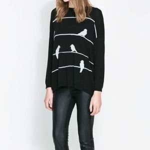 Zara Sweaters - HOSP PICKZara sweater