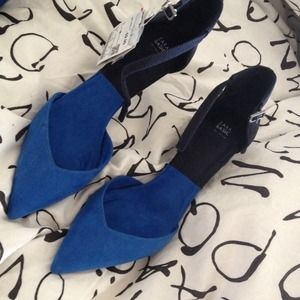 Just sharing!  Zara Colorblock Shoes 