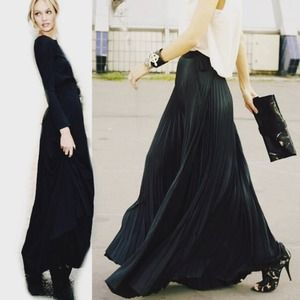 Sheer Chiffon Pleated Maxi Skirt