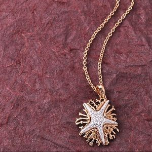 Adorable silver colored Starfish on gold Coral