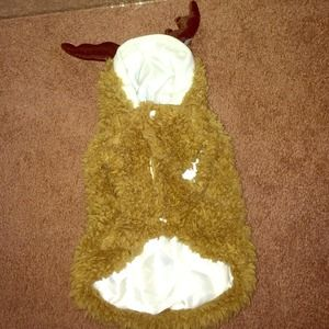 Reindeer puppy coat