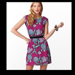 Lilly Pulitzer Dresses & Skirts - ⚡️LAST CHANCE SALE⚡️New Lilly Pulitzer Dress!!