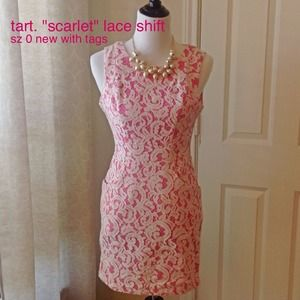 "NWT tart. ""scarlet"" lace shift. size 0. pockets!"