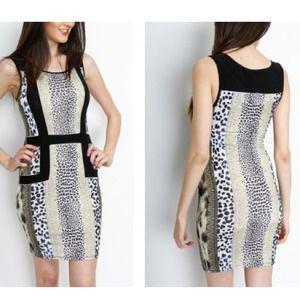 SALEAnimal Print Dress