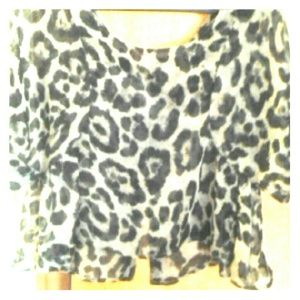 krazy kitty  Tops - Leopard print sheer top NWT!