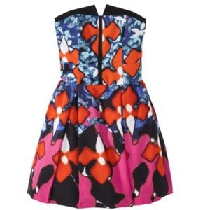 Peter Pilotto for Target Dresses - Peter Pilotto Red Iris Signature Dress 2