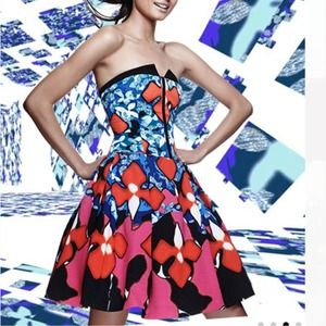 Peter Pilotto for Target Dresses - Peter Pilotto Red Iris Signature Dress 3