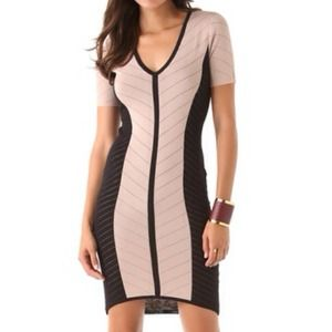 Torn by Ronny Kobo Dress