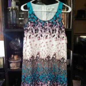 Kensie Shift Dress