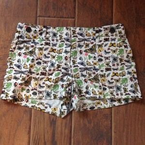 J. Crew Pants - J Crew Bug Shorts
