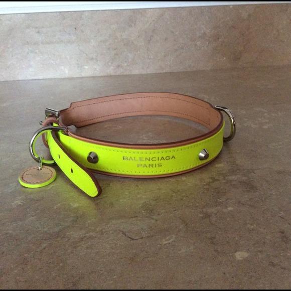 Balenciaga Accessories Dog Collar And Leash Poshmark