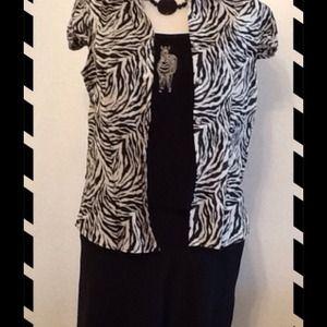Dresses & Skirts - NWOT Safari Zebra Separate Set