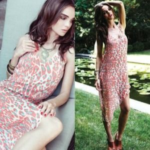 Lovers+Friends Free Bird Leopard Dress