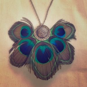 Peacock necklace!