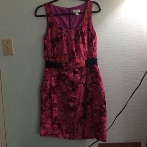 Loft Sold Ann Taylor Loft Black Amp White Floral Dress