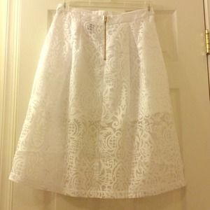 Brand New White Sheer Burnout Skirt (tag fell off)