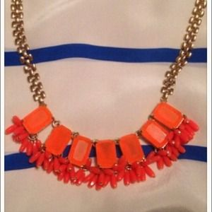 Host Pick JCREW statement FRINGED NEON NECKLACE