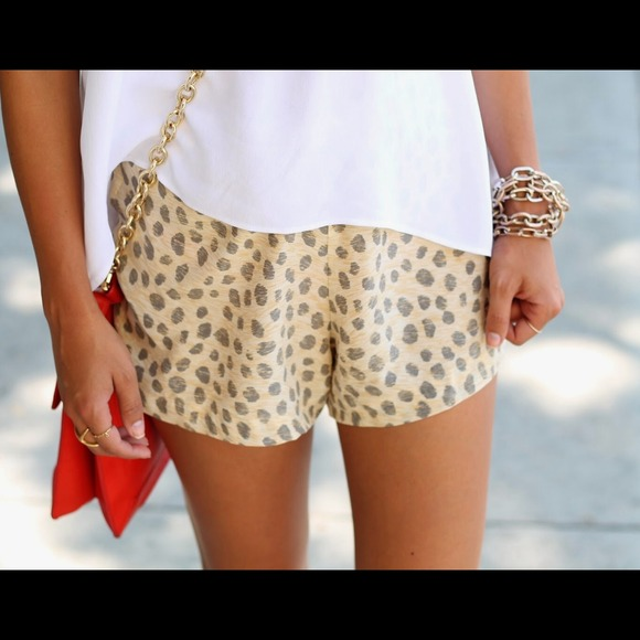 equipment Other - Equipment Leopard Print Shorts 2