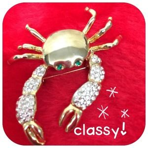 Accessories - ✂️️price cut ✂️🐙🐚crab brooch🐳🐠 brand new!👍