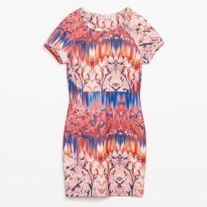 Neoprene printed dress