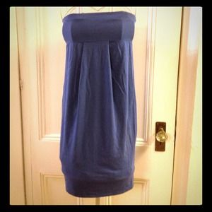 Splendid pima cotton tube dress in cornflower blue