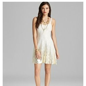 HP! Free people lace fit n flare foil ombre dress