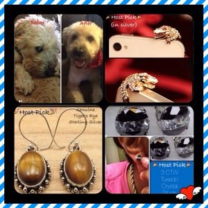 Jewelry - Bundle for @jwielch (Oliver not Included)