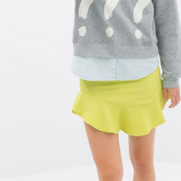 Zara Frilly Skirt!