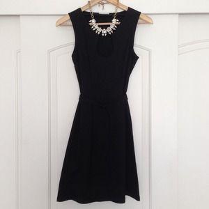 *Chaiken & Capone A-line dress