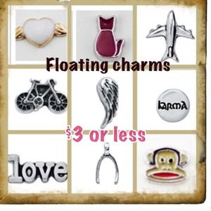 Jewelry - New floating charms $3ea 2/$5 3/$7 4/$8 5/$9 6/$10