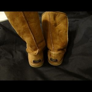 Chestnut tall UGGS! Size 6!!!