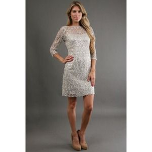 Kay Unger New York 3/4 Sleeve Lace Dress in Silver