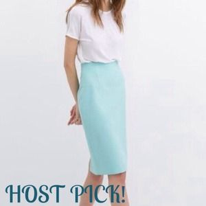 Zara Dresses & Skirts - ❤️HOST PICK!❤️ NWOT Zara Midi Pencil Skirt