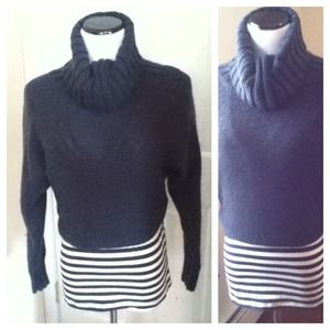 Cropped Turtleneck Navy Sweater