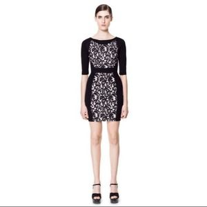 Zara W&B collection lace panel dress