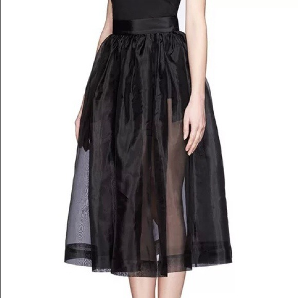 43 Off Dresses Amp Skirts See Thru Skirt With Built In