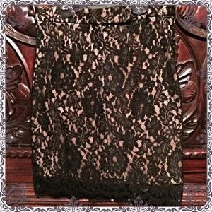 NWT Cache Black Lace Skirt Size 4