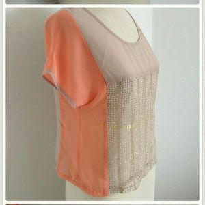 SS NWT sheer color block beige top