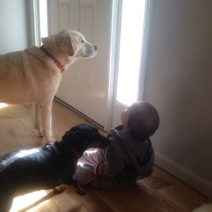 My son and our furry kids lol