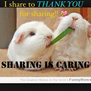 Share for Share means Thank You!!!😊💐👍💝