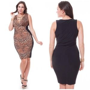 Dresses & Skirts - 💥Sexy Leopard Plus Size Dress💥