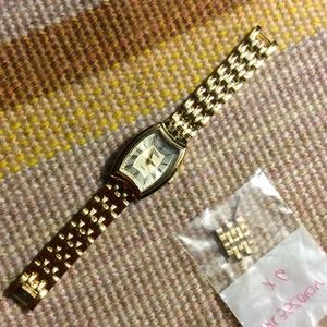 Stainless steel panther link Watch
