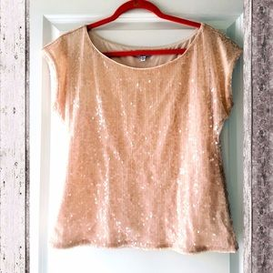 🎉HP🎉 Pale Pink Sequined Tunic✨